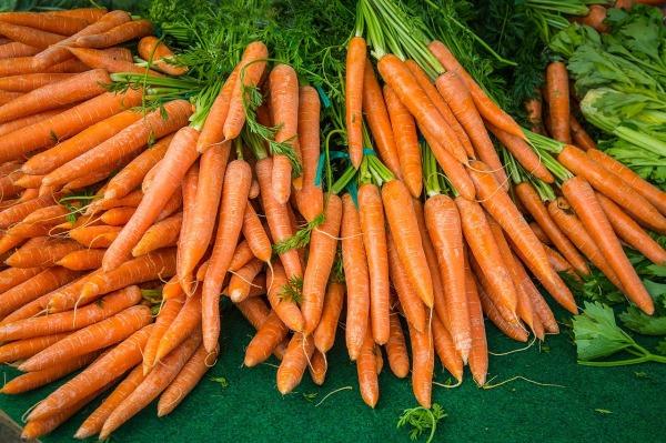 carrot-2309814_1280 (1)