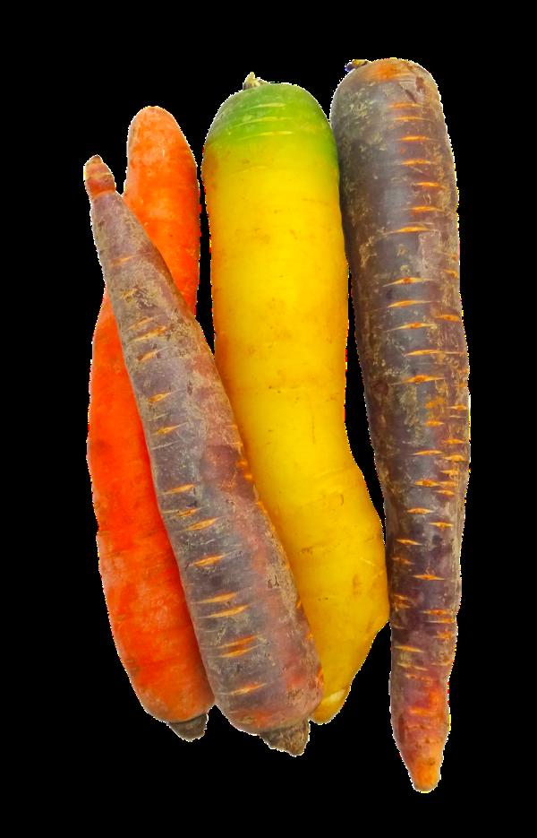carrots-2144401_1280 (1)
