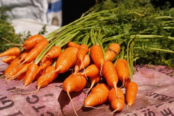 vegetable-1553195_1280 (1)